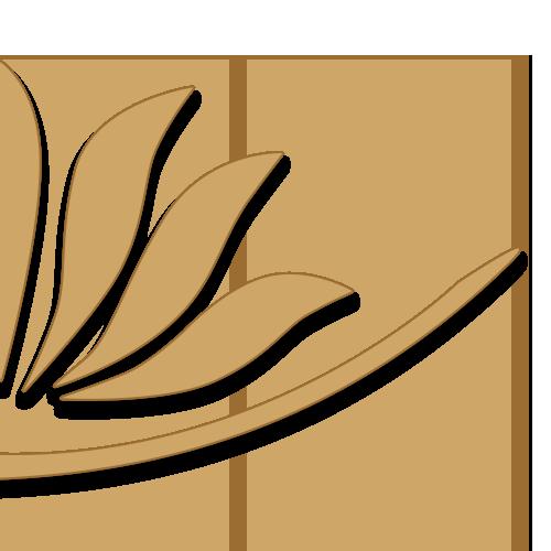 flor-sombra